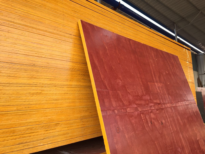 带你深入了解金生水建材的木制建筑模板